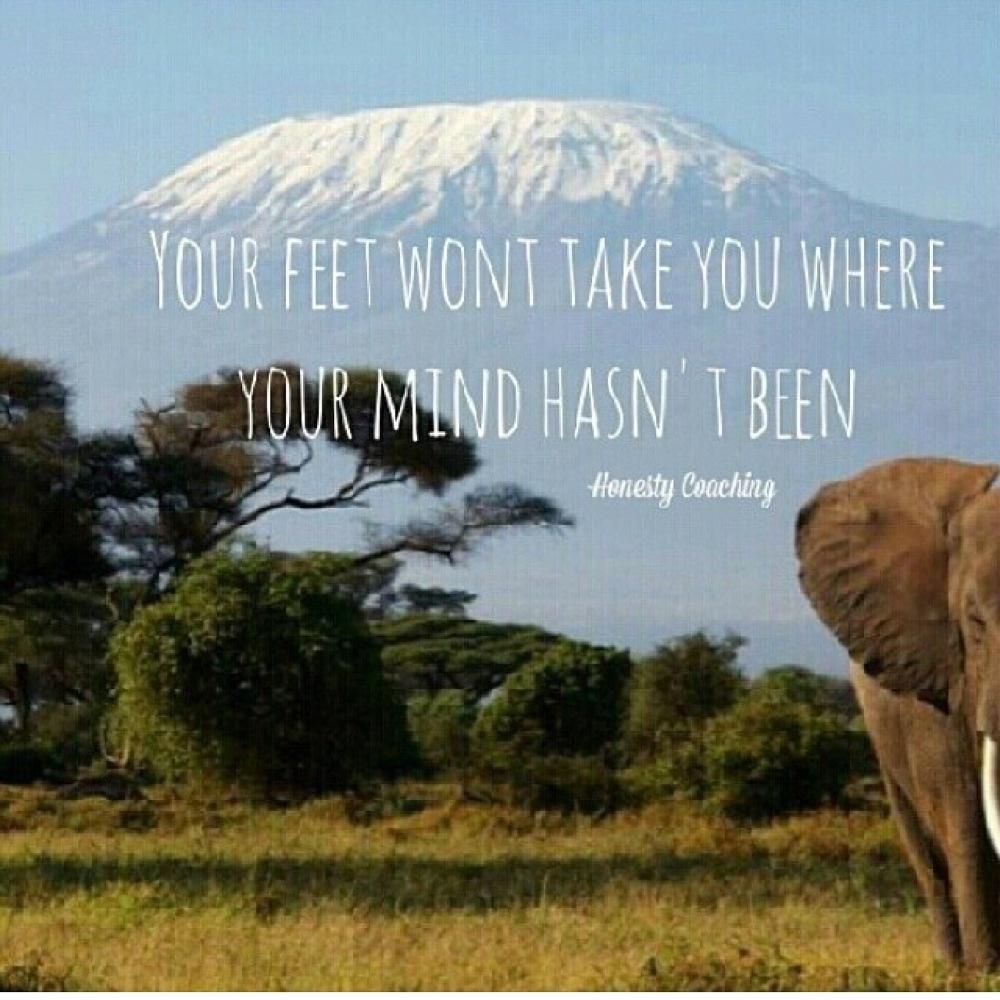 afrika-kilimanjaro-elefant-savann