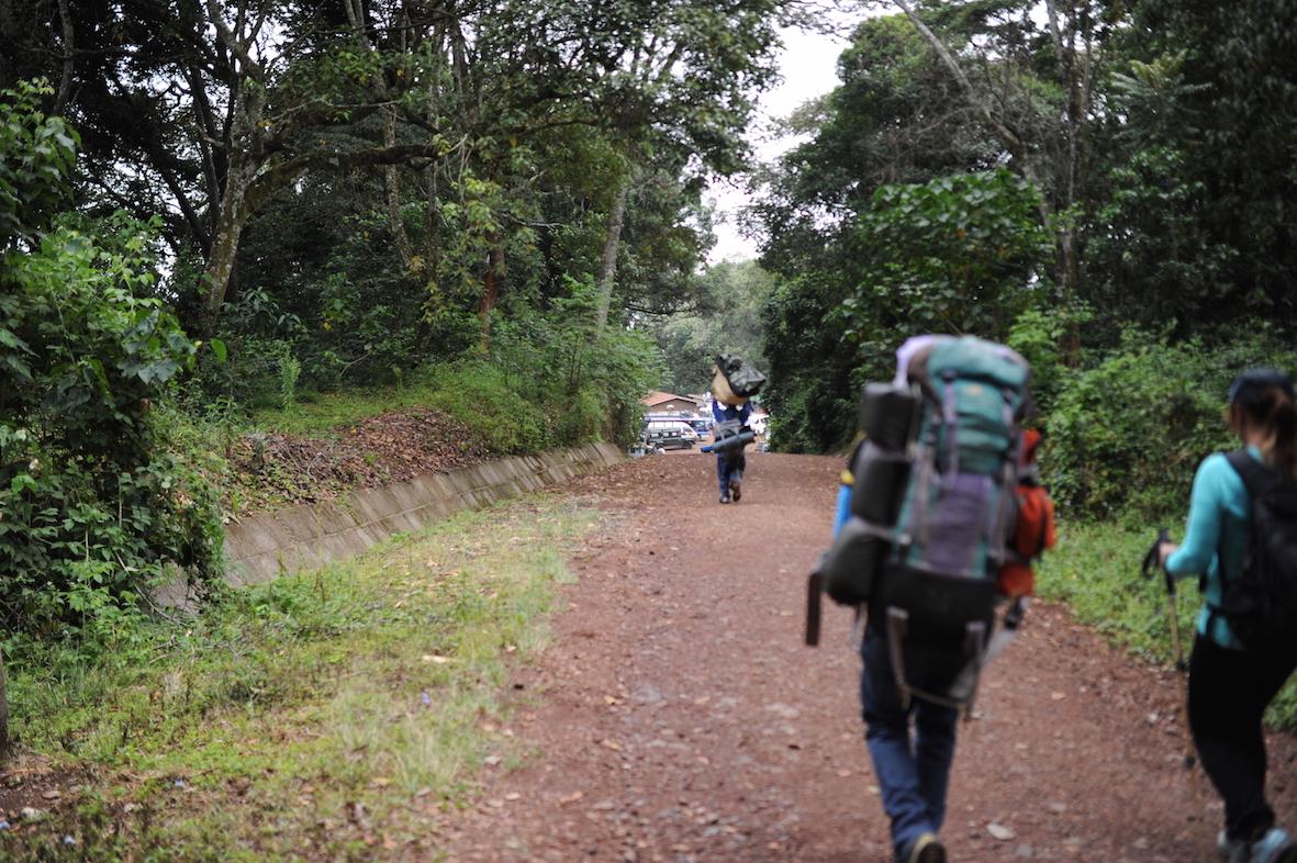 kilimanjaro-ser-malgang-seger